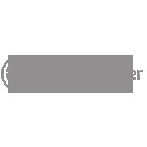 Logo Data Trooper Grijs